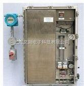 在线水中VOC 分析仪