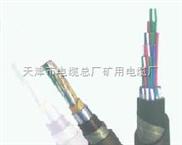 铁路信号传输电缆300V--PTYV PTYA【出厂价】