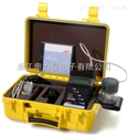 PDV6000-重金属分析仪PDV6000