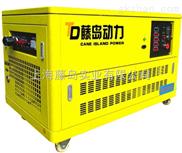 限电专用10千瓦天然气发电机组