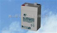 6V4.5AH电子秤专用电池,6V4.5AH电子秤专用赛特蓄电池价格多少?