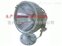 节能型LED防爆灯BAD808(G型) 防爆投光灯 图片