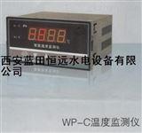 WP-C温度监测仪/恒远订做各种监测仪