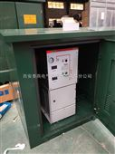 四川小区专用环网柜一进两出XGN15-12高压环网柜